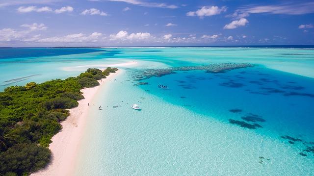 tropické pobřeží