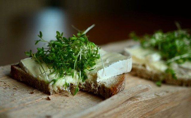 chléb se sýrem a rostlinnými klíčky.jpg